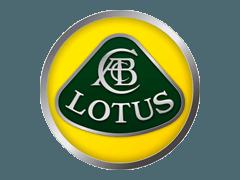 Używane Lotus części zamienne